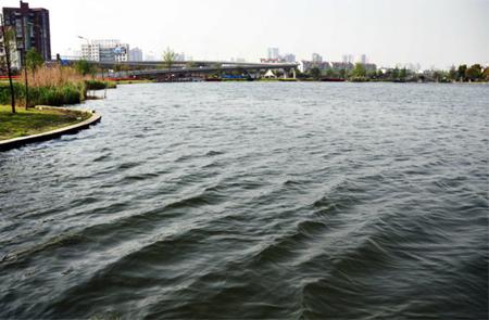 江北日湖:全力打造人水和谐城市