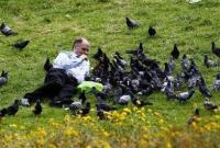 """英国车站野鸽泛滥成灾滋扰乘客 当局请""""鹰""""应对"""