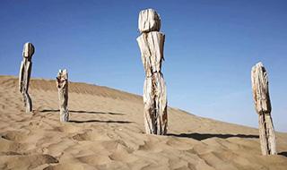 宁波教师大漠考古 有重要发现