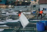 泉州碳九泄漏续报:残留油污已完成清理 将严处涉及人员