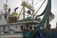 舟山渔民整理网具战冬汛