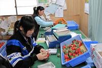 在日外籍技能实习生8年死亡174人 中国人最多