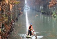 杭州:打捞落叶护水质