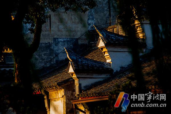 "bob开户:这隐藏在宁波市中心的""仙境"" 你去过吗?"