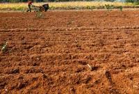 调查:土地收益补偿 为何成了一笔糊涂账