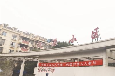 泗港:往昔商贸重地,如今华丽新生