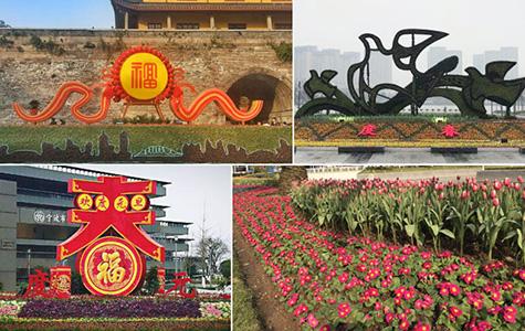宁波街头花团锦簇喜迎春节