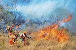 四川西昌发生森林火灾