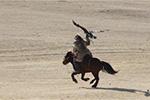蒙古国举办猎鹰节吸引游客