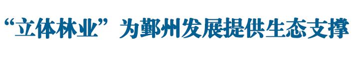 """""""立体林业""""为鄞州发展提供生态支撑"""