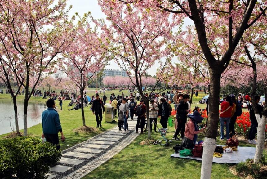 植物园春光明媚