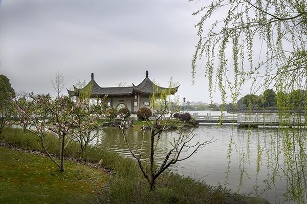 春天的仁湖