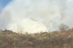 陕西铜川发生森林火灾 起火原因初步推断为清明祭扫