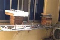 杭州一小区住户养五箱蜜蜂 邻居们吓得窗户都不敢开