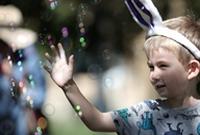 复活节 扮小兔