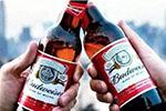 啤酒巨头百威英博因垄断行为遭欧盟罚款逾2亿欧元