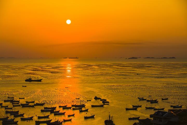 舟山枸杞贻贝养殖基地 最壮观的海上牧场