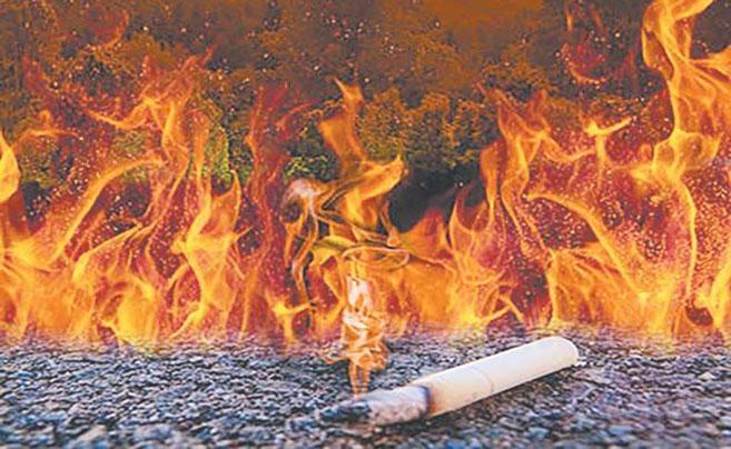 全国数起火灾事故皆因乱扔烟头引发 谁来惩戒乱扔者