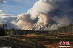 加拿大油气资源大省山林野火蔓延 已逾4000人疏散