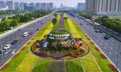 迎贵客 宁波街头布置了72万盆鲜花
