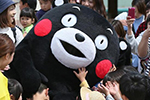 熊本熊想当东京奥运火炬手被拒?年龄太小 非人类