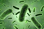 吃同种药为啥效果各异?改变药物活性的肠道内细菌酶找到