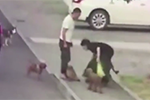 女子遛3只狗不拴绳 男子护小狗被烈犬咬致下体撕裂缝30针