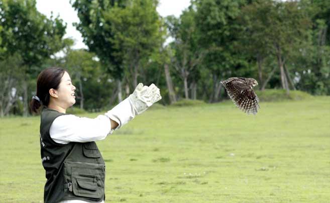 慈溪开展救助野生鸟类放飞活动
