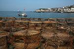 浙江沿海的人不缺碘 原因并非海鲜吃得多