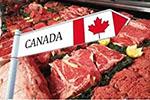 中方将暂停所有加拿大肉类对华出口?使馆回应