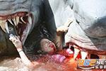 美国女子在巴哈马浮潜时遭3只鲨鱼攻击 伤重不治