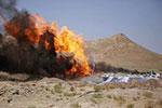 阿富汗:销毁毒品