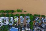 广西柳州柳江出现超警戒水位