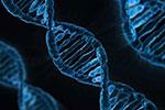 我国科研人员发布新型基因编辑技术:编辑效率最高可达80%
