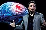 """马斯克搞""""人脑植芯片""""项目 外媒惊呼""""人类还没做好准备"""""""