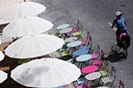巴黎:没有沙子的沙滩节