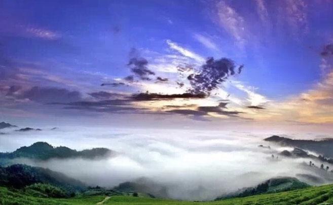 夏日的四明山云雾美如画