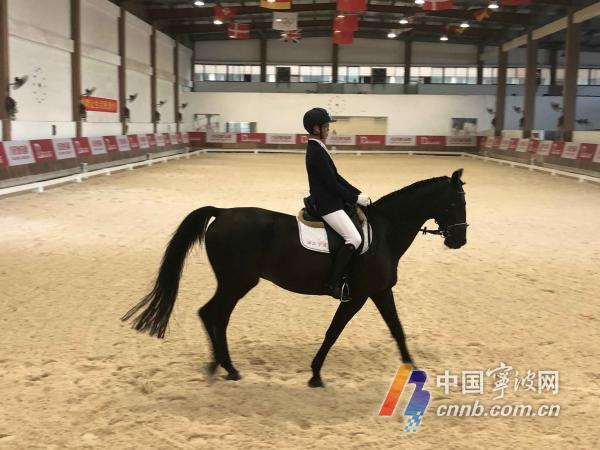 宁波骑手全国马术场地障碍青少年锦标赛摘金 还入选国奥队