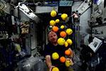 NASA尝试在国际空间站种辣椒 为登陆火星做准备