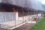 巴西北部一监狱发生暴动 已造成52人死亡