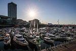 悉尼国际游艇展开幕