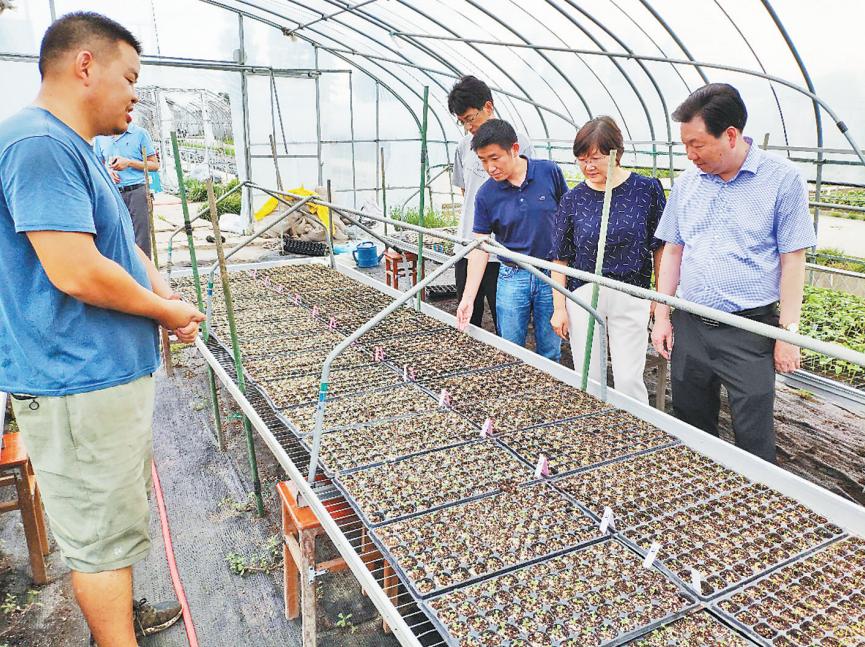 省农业农村厅专家组来鄞开展救灾技术帮扶