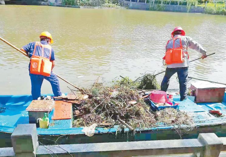 我区持续开展河道恢复行动,90%以上河道完成清理工作