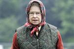 英女王穿着低调在皇家城堡被游客搭讪:见过女王?她回:没见过