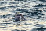 破纪录!美国女泳将抗癌成功 第4次横渡英吉利海峡
