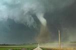 """美佛州中部遭龙卷风""""内斯特""""袭击 近万户停电"""