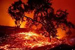 加州野火肆虐又陷红色火海 一夜之间蔓延近万英亩