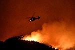 美加州野火蔓延:施瓦辛格半夜撤离、电影首映礼取消