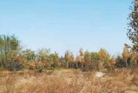 9次处罚、顶风上马的黄河滩区游乐园 终于拆了!