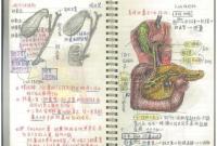膜拜!浙大最美笔记出炉 十二指肠和苏州留园都画在笔记里